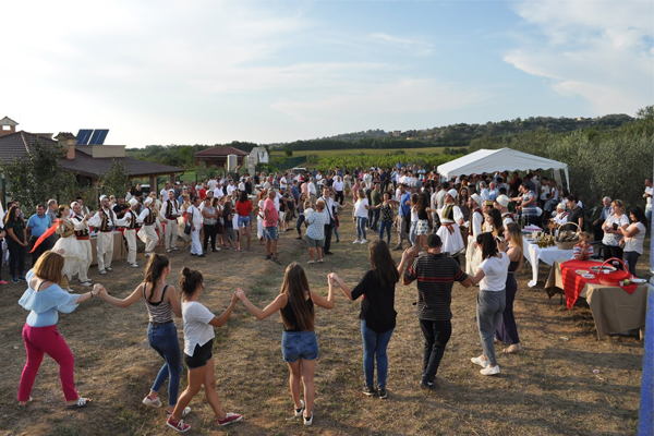 Annual wine Festival in Tirana