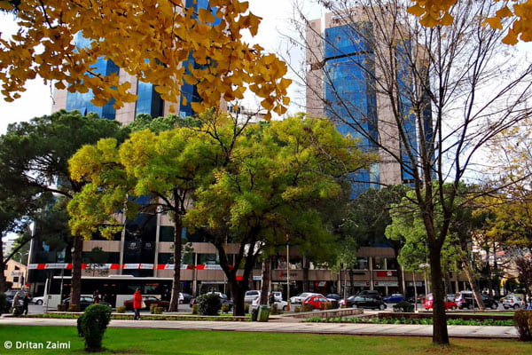 What to do in October in Tirana