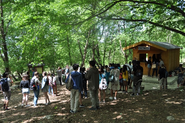 Visitors flock to Dajti Adventure Park