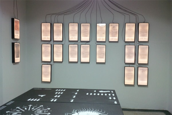 House of leaves museum in Tirana opened