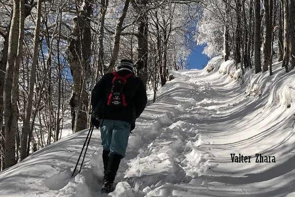Winter Sport on Mountain Dajti