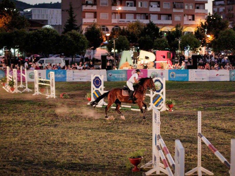 Equestrian Sport in Tirana
