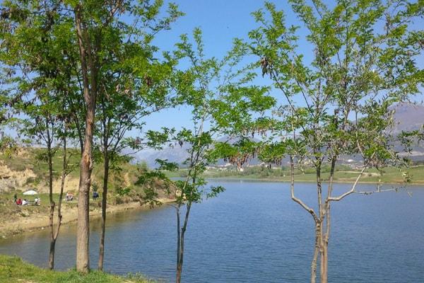 Lake of Farka Tirana