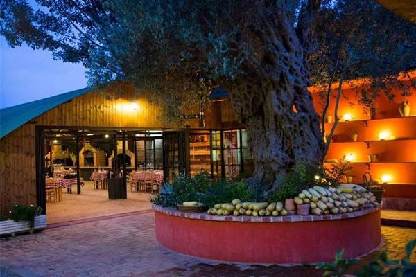 fattoria Uka, ristoranti Tirana dintorni, explorare Tirana