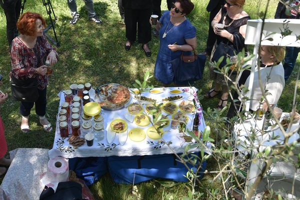 Olive Oil Tour in Tirana, Olive Oil tours in Tirana, olive groves in Tirana, daytrips in Tirana, Tirana tours, Explore Tirana