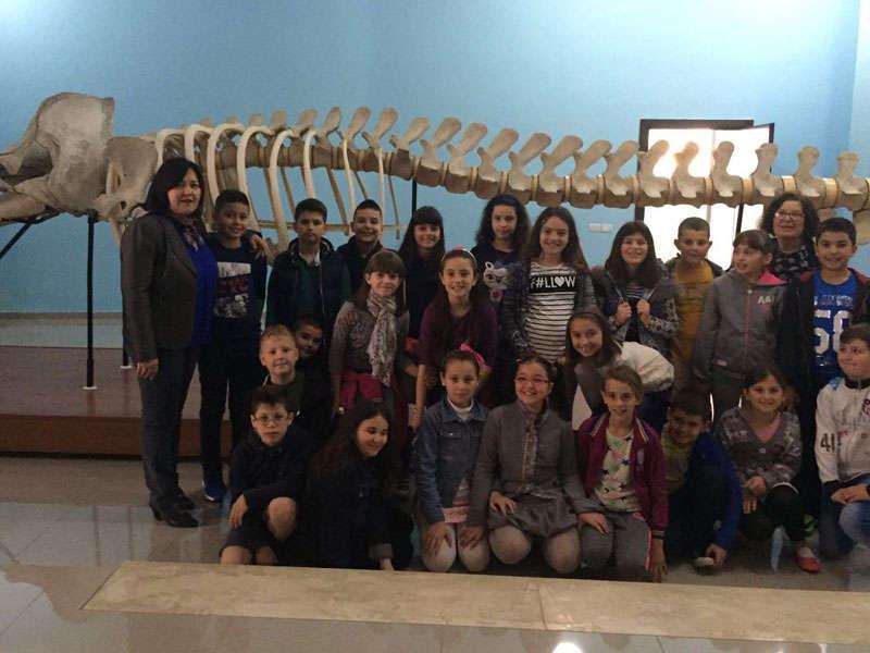 museo delle scienze Albania, Museo di Scienze Naturali di Tirana