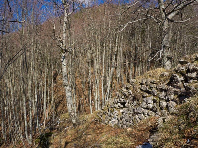 Dajti Castle Ruins in Tirana