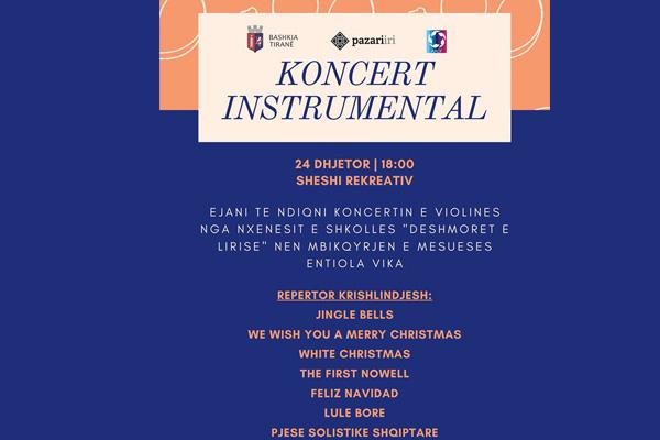 Violin Instrumental Concert