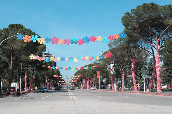 Summer Day activities in Tirana