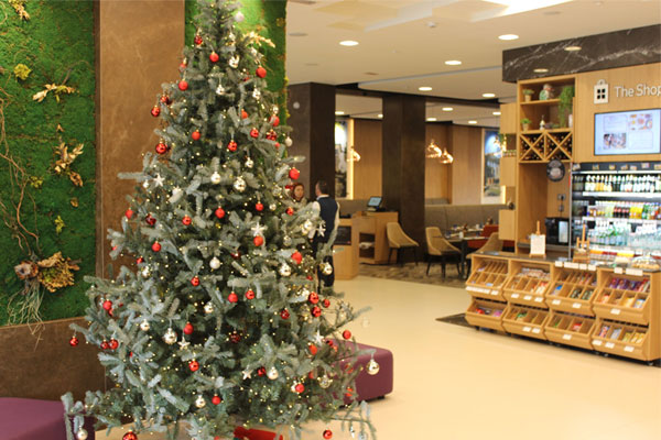 The Hilton Garden Inn Tirana hotel surprises with new Christmas recipes