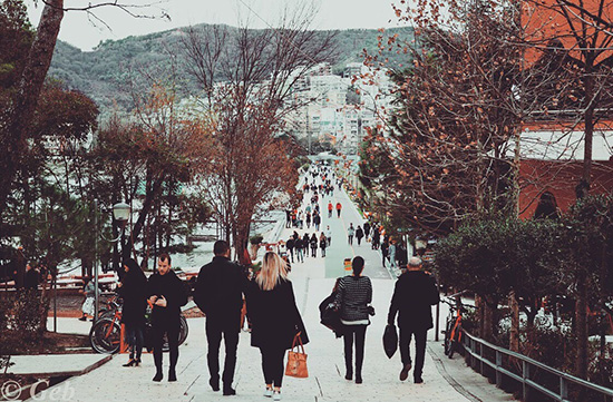 What to do in January in Tirana