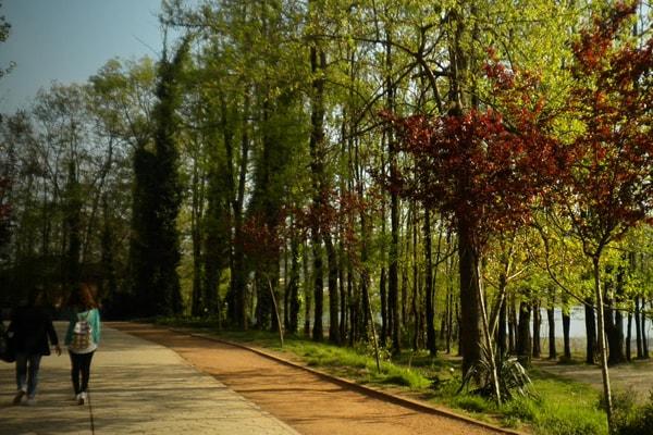Tirana Lake