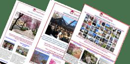 Newsletter Visit Tirana